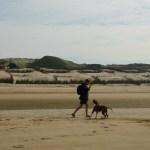 Sandworm at Wenduine beach (Images Courtesy Nikita Wu)