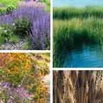 Integrated Landscape Elements