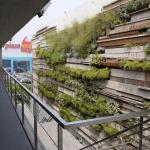 PHOTOGRAPH Ygreen wall in yard : Image Courtesy © Juan Solano Ojasi