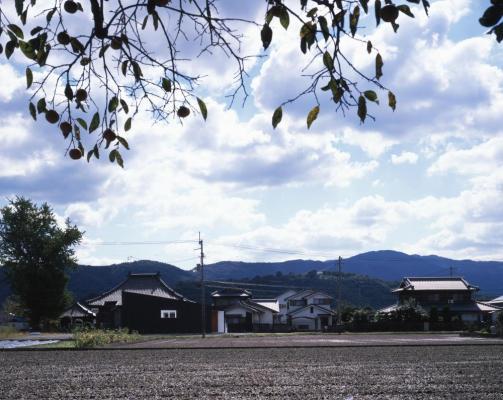 Image Courtesy ©  Kaori Ichikawa