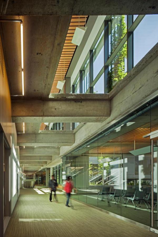 Daylight penetrates to underground conference level. - Photo Credit: Nic Lehoux