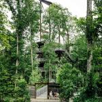 Phototropic structural frame elevates renewable energy elements above the forest canopy. , Image Courtesy © Joe Fletcher