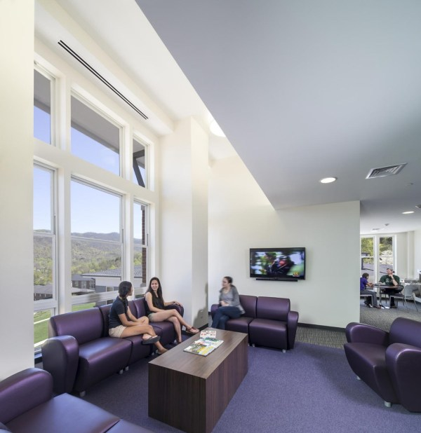 Each of the common living rooms in The Towers has couches, plush chairs, meeting tables and 55-inch, Internet-ready flat-screen TVs, so that students can hook up an Xbox or watch Netflix., Image Courtesy © Jonathan Hillyer