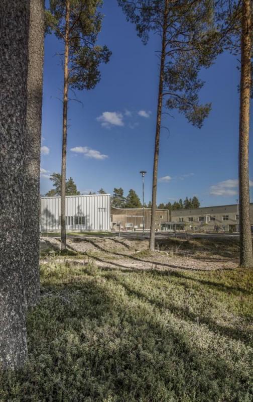Image Courtesy © Ville-Pekka Ikola