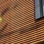 Refined wood slats reinterpret the adjacent trees , Image Courtesy © Bruce Damonte