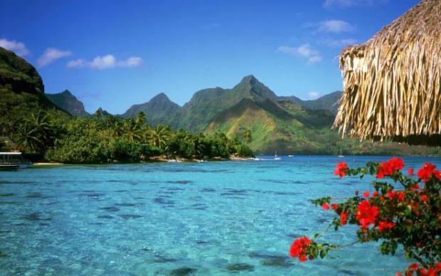 768587940 اجمل رحله سياحيه الى اروع جزر الكاريبي