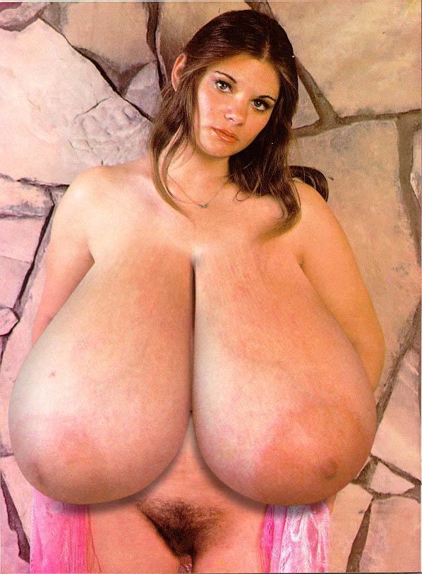 Janessa brazil boobpedia