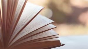 La politique du livre en Ontario menace les librairies franco-ontariennes.  Pixabay
