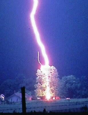 lightning_striking_tree.jpg
