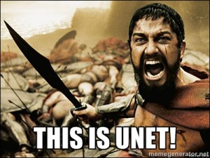 this_is_unet