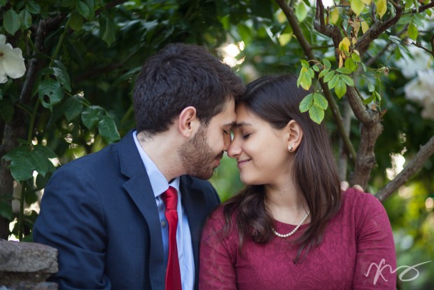 lucia-mark-berkeley-rose-garden-engagement--4