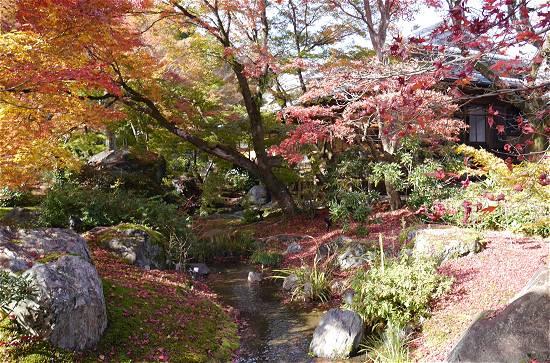 宝厳院 小川と紅葉
