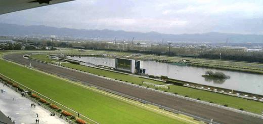 京都競馬場,天候,天気