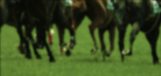 horse_types