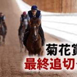 菊花賞2015最終追切タイム