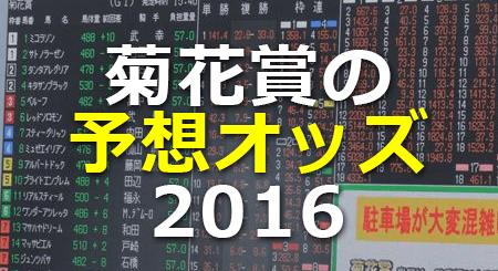 菊花賞の予想オッズ2016