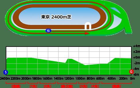 grass_2400_2