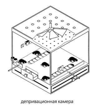 Депривационная_камера