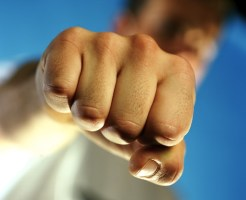 Kotaku_201301_did_fist_fighting_change_the_course_of_human_evolution (1)