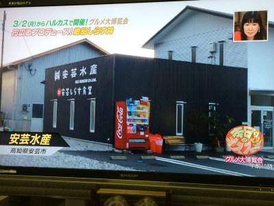 よーいどん あべのハルカス近鉄 関西テレビ カンテレ グルメ博覧会 しらすよーい丼 芸釜あげちりめん丼