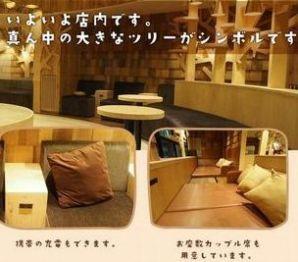 【東京】 池袋西口の猫カフェ MoCHA(モカ)料金や特徴は?