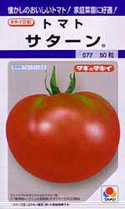 satan-tomato