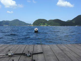 2008 9月8日 (17) 音海