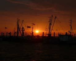 sunset-50315_640