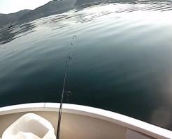 ボートキス釣り