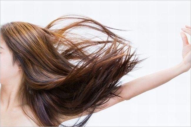 髪の毛 食品