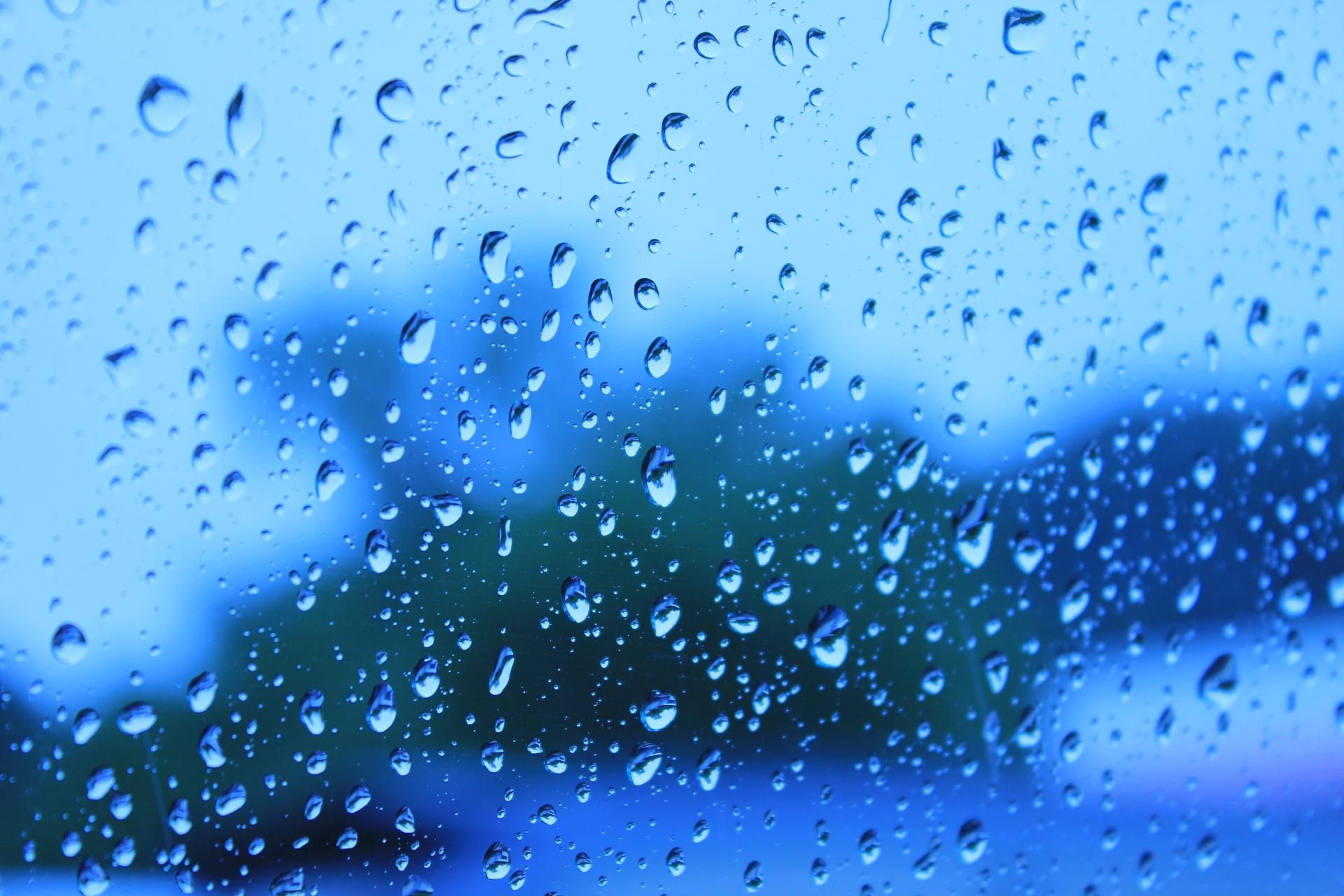 梅雨 遊び方