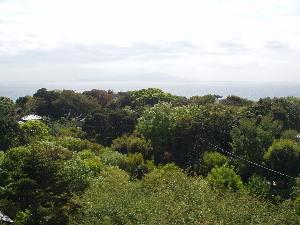 新緑の浮山温泉郷