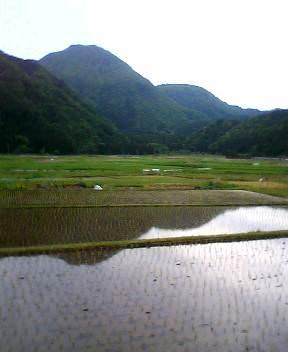 池の田園風景