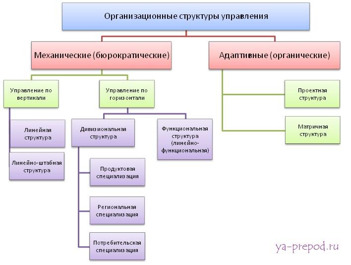 Разновидности организационных структур упралвения ya-prepod.ru