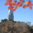 atumun_leaves_shinjyukugyoen_eyecatch