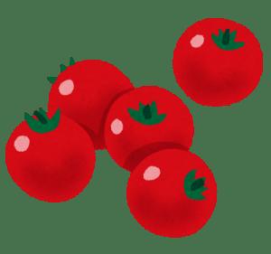 トマトの栄養と効能。加熱では効果は変わる?妊婦の食べ過ぎの影響