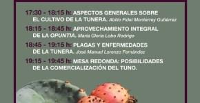 El Cabildo organiza una jornada dedicada a difundir las posibilidades agrícolas de la tunera