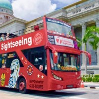 Hop on hop off city bus sightseeing 48 hours cheap ticket discount promotionUniversal studios garden by the bay sky park marina river cruise