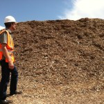 Free Wood Chip Pile