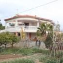 Villa Busot (MAVA-2603-VI-5)