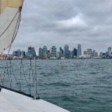 Looking to be crew anytime for races or social sails