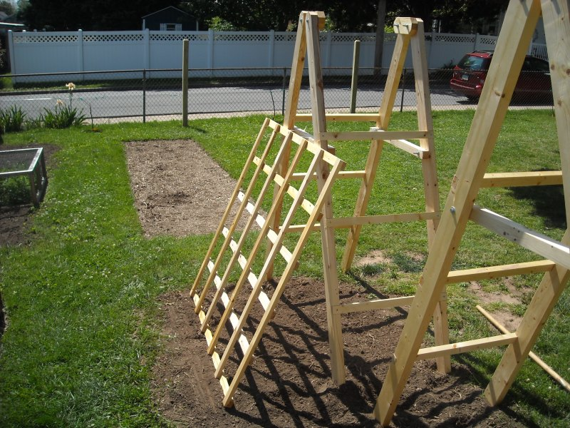 Large Of Trellis For Cucumbers