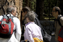 Yosemite Half Day Nature Tours