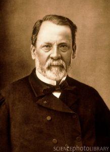 Portrait of the French chemist Louis Pasteur