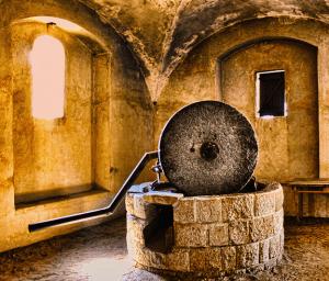 Olive-Oil-Press