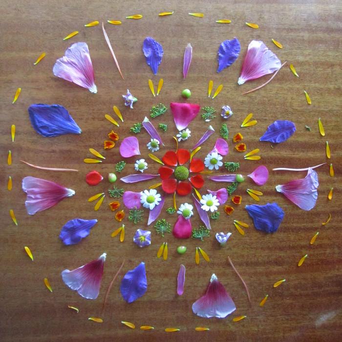 Danmalas - DIY Anleitung für die blumigen und heiligen Mandalas deiner Seele