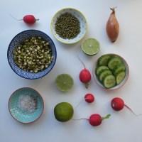 Indischer Mungbohnen Salat - mit natürlicher und asiatischer Salatsoße