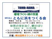 tomohama_banner