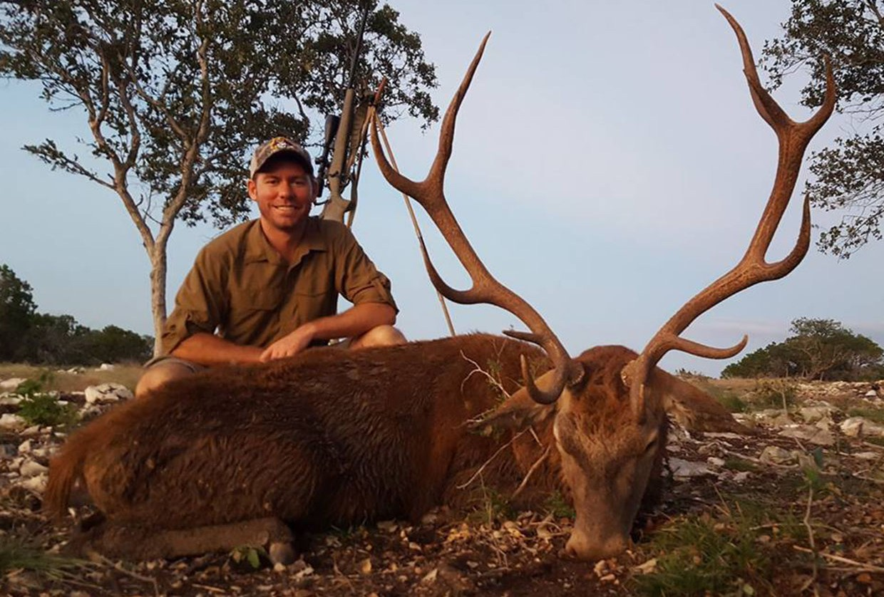 Red Deer Hunt