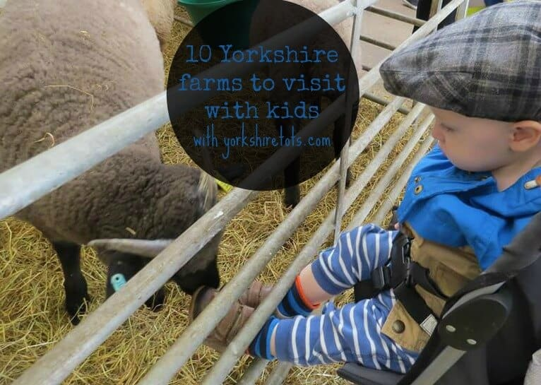 10 Yorkshire farms to visit with kids